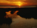 Sunset over a Salt Marsh with Cordgrass