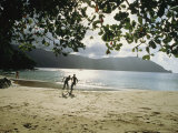 People Frolic on a Man O War Bay Beach