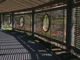 Patterns of Shadow and Sunlight on a Covered Garden Walkway
