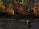 Fly-Fisherman Lays Out a Perfect Cast in Search of Atlantic Salmon