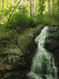 Crabtree Falls Cascades over Rock into a Woodland Pool