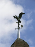 A Sparrow Perched on an Eagle-Shaped Weather Vane