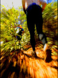 Adventure Racing Through the Woods
