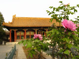A Rose Garden at the Summer Palace  Now a Public Park 