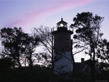Silhouetted Trees and Nauset Lighthouse at Twilight