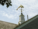 A Dolphin Weather Vane Atop a Cupola