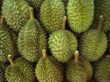 Spiny Green Durian Fruit Sold at a Market