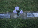 Hydrangea Flowers are Placed in a Graveside Vase