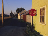 A Stop Sign in a Rural Alley