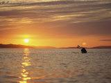 Kayaking at Sunset on Hudson Strait