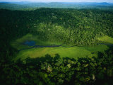 An Aerial View of Langoue Bai  a Waterhole Carved Out by Elephants
