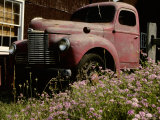 Crown Vetch Flowers  a Barn  and a Vintage Truck Add Local Color