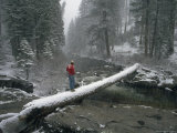 Crossing the American River on a Snow-Covered Log  South Fork of the American River  California