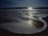 The Atlantic Ocean with Moonlight Reflected on the Foamy Surf  Assateague Island  Virginia