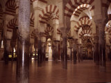 The Ancient Arches of the Mosque in the Mezquita in Cordoba  Spain  Cordoba  Spain