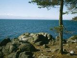 View of Juan De Fuca Strait from East Sooke Regional Park
