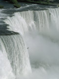 Bird Flies Past American Falls