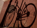 A Shadow Pattern Suggests a Bicycle Lying Across the Brick Walk