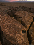 Petroglyphs on Volcanic Rock in Owens Valley  California