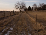 A Unpaved Path Leads up to Steven's Creek Farm in Walton  Nebraska