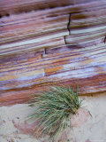 The Striations and Banding of a Rock Showing Different Rock Types  Capitol Reef National Park  Utah