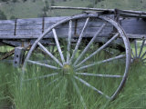 Wrecked Wooden Wagon  Montana  USA