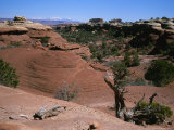 Rock Formations Shaped by Erosion in Canyonlands National Park
