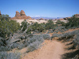 A Hiking Trail Through Canyonlands National Park