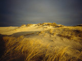 Sand Dunes and Beach Grass  Nauset Beach  Cape Cod National Seashore  Massachusetts