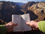 A Man Reads a Book with a Beautiful View Down the Valley  Zion National Park  Utah