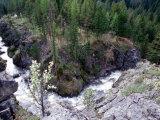 The Willowa River Rushes through a Gorge  Oregon  USA