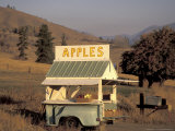 Honor-System Apple Stand in the Methow Valley  Washington  USA