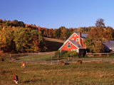 Autumn View of Farm in Late Afternoon Light  Vermont  USA