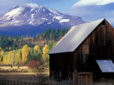Barn and Mount Adams  Trout Lake  Washington  USA