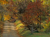 Fall Colors  View Of Country Land  Loudoun County  Virginia  USA