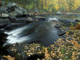 Autumn Leaves at Packers Falls on the Lamprey River  New Hampshire  USA