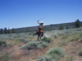 Cowgirl Riding with Lasso in Sage Brush Country  Oregon  USA