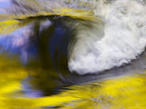 Stream Abstract with Reflections of Spring  Great Smoky Mountain National Park  Tennessee  USA