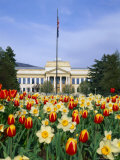 Spring Flowers and John Park Building  University of Utah  Salt Lake City  Utah  USA