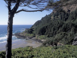 View from Interpretive Center  Cape Cove  Cape Perpetua Scenic Area  Oregon  USA