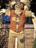 Scarecrow in Suburban Yard at Halloween  Logan  Utah  USA