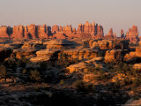 Dawn in the Needles District  Cedar Mesa Sandstone  Canyonlands National Park  Utah  USA