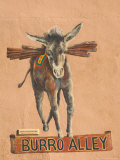 Burro Mural on Burro Alley  Downtown Santa Fe  New Mexico  USA