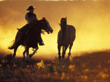 Cowboy and Horse at Sunset  Ponderosa Ranch  Seneca  Oregon  USA