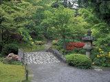 Stone Bridge and Pathway in Japanese Garden  Seattle  Washington  USA