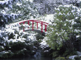 Moon Bridge in Kabota Gardens  Seattle  Washington  USA