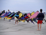 International Kite Festival at Long Beach  Washington  USA