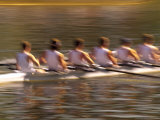 Crew Rowing  Seattle  Washington  USA