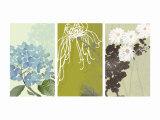 Eastern Floral Triptych