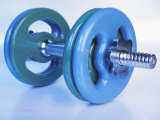 Green and Blue Plastic Dumbbells for Workout